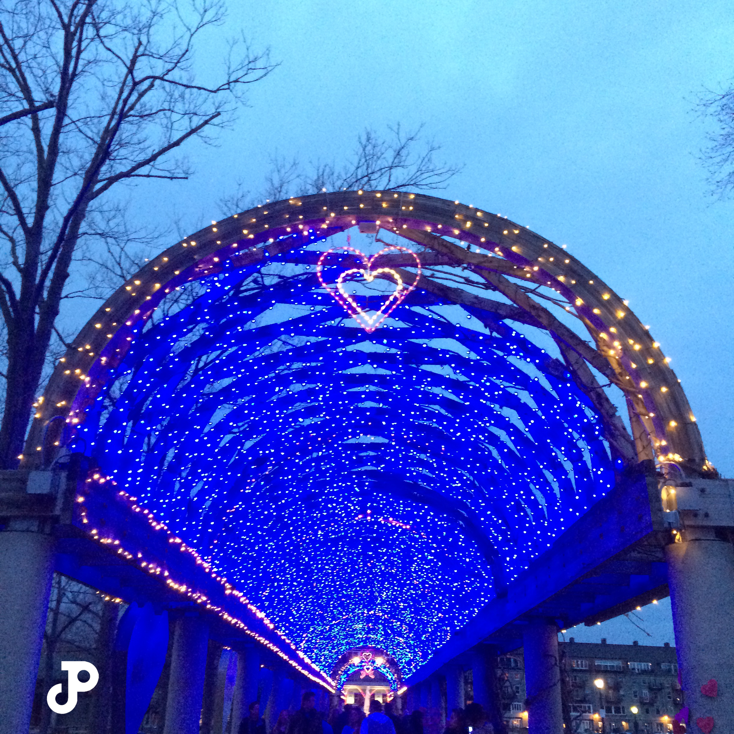 a wooden archway decorated with thousands of bright blue fairy lights in Columbus Park