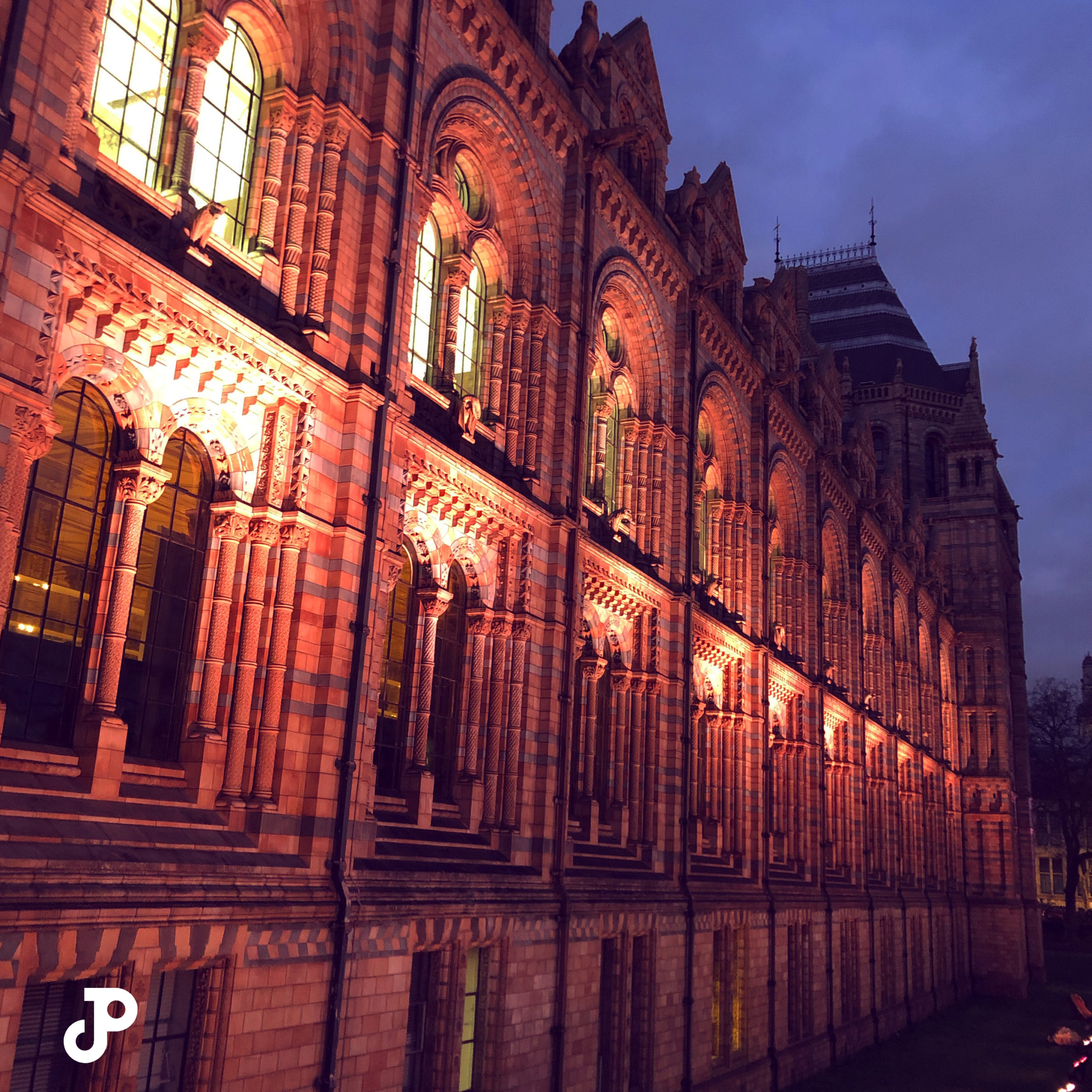 the ornate facade of the London Natural History Museum illuminated at night