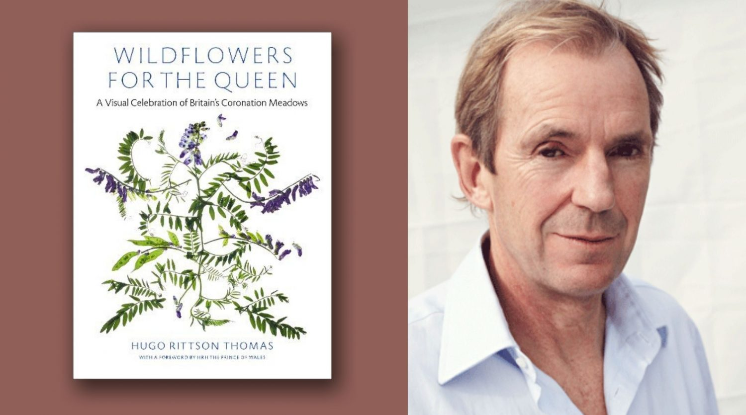 A graphic of the Wildflowers for the Queen book cover and its author Hugo Rittson Thomas